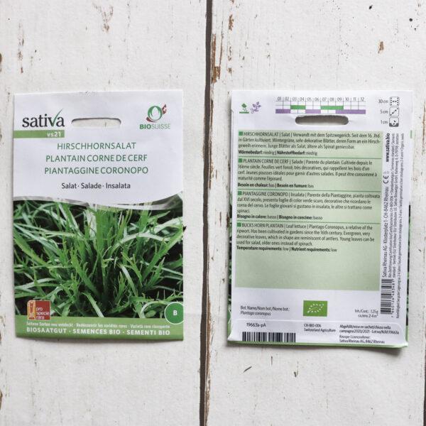Hirschhornsalat Bio-Saatgut von Sativa