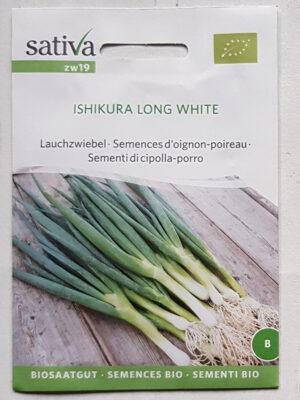 Lauchzwiebel ISHIKURA LONG WHITE Bio-Saatgut von Sativa